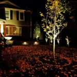2016.11.10-Raintree-Irrigation-and-Outdoor-Systems-Outdoor-Lighting-2