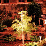 2018.04.17-Raintree-Irrigation-Landscape-Outdoor-Lighting-3
