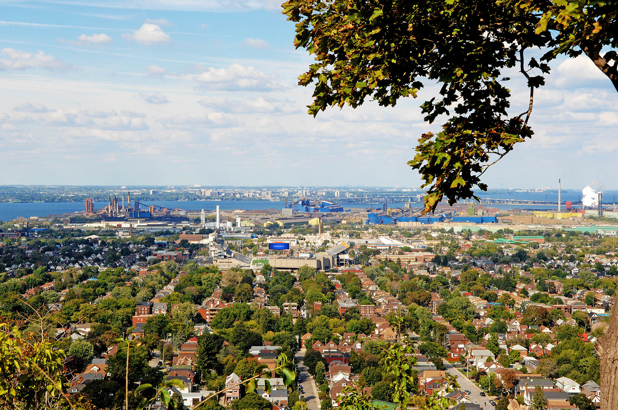 A picture of the lower city of Hamilton from the mountain, with the harbour in the background.
