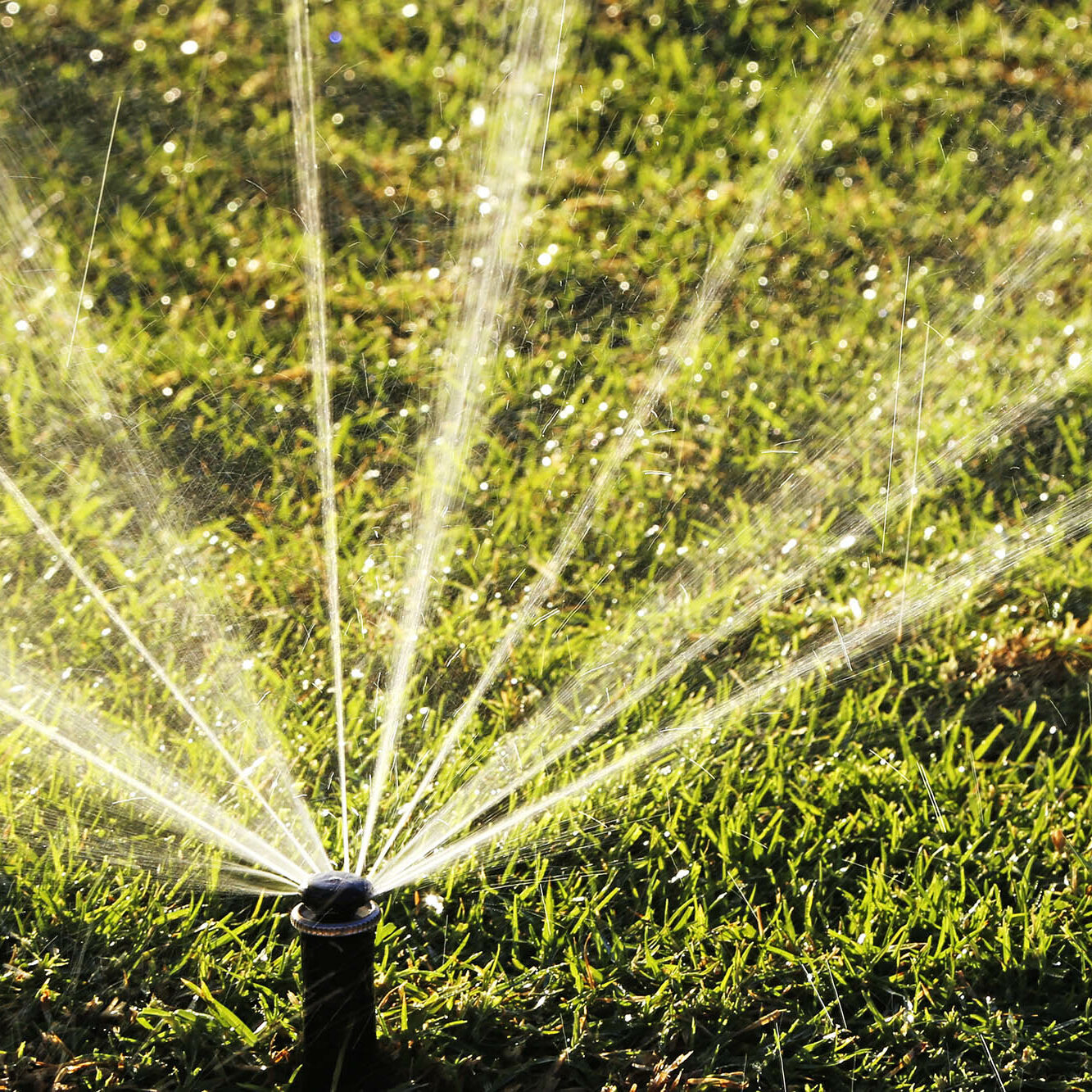 Sprinkler spraying water in grass field.
